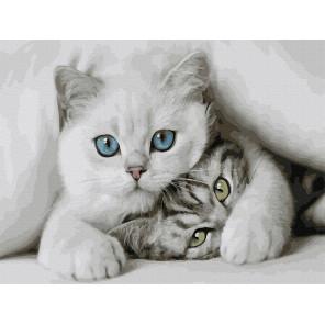 Милые котята Картина по номерам Molly KK0684