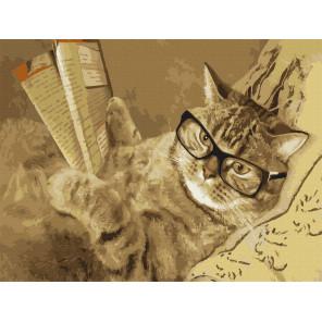 Умный кот Картина по номерам Molly KK0697