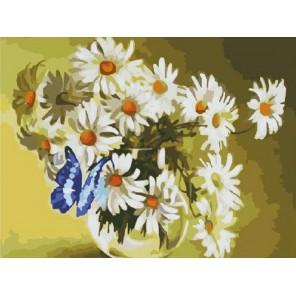 Бабочка в ромашках Раскраска (картина) по номерам на холсте Molly