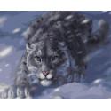 Снежный барс на охоте Раскраска картина по номерам на холсте Z-GX4948