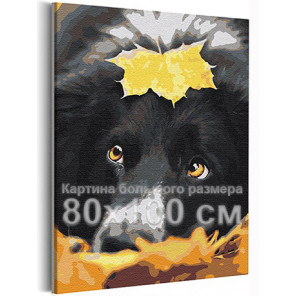 Осенний лист и собака / Прогулка / Животные 80х100 см Раскраска картина по номерам на холсте AAAA-RS374-80x100