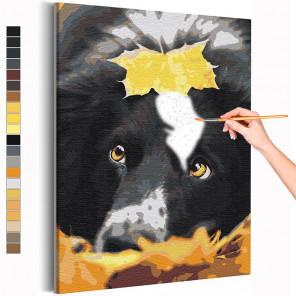 Осенний лист и собака / Прогулка / Животные Раскраска картина по номерам на холсте AAAA-RS374