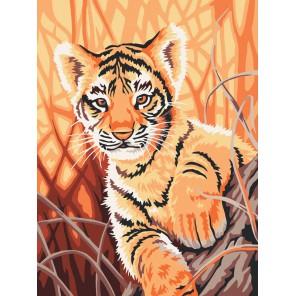 Тигренок в джунглях Раскраска ( картина ) по номерам акриловыми красками на холсте Белоснежка