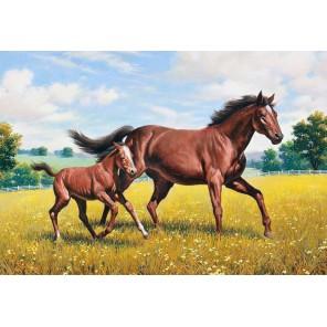 Донские лошади Алмазная вышивка (мозаика) Гранни