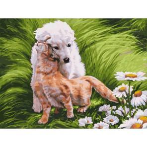 Обожание Раскраска ( картина ) по номерам на холсте Белоснежка