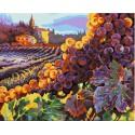 Тосканский урожай (художник Клиф Хедфилд) Раскраска картина по номерам Plaid