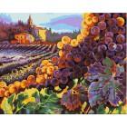 Тосканский урожай Раскраска картина по номерам акриловыми красками Plaid