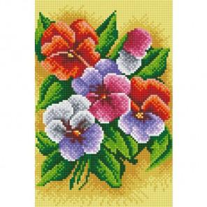 Фиалки трехцветные Алмазная вышивка (мозаика) Белоснежка