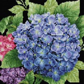 Садовая гортензия Алмазная вышивка (мозаика) Белоснежка