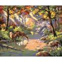 Бухта в солнечных лучах Раскраска картина по номерам акриловыми красками Plaid | Купить раскраски по цифрам