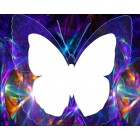 Область выкладки Бабочка Алмазная частичная вышивка мозаика на подрамнике Color Kit