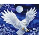 Ночной полет Алмазная вышивка (мозаика) Molly
