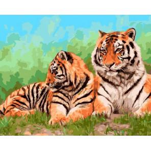 Амурские тигры Раскраска ( картина ) по номерам на холсте Iteso