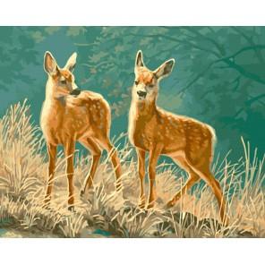 Пятнистые оленята Раскраска ( картина ) по номерам на холсте Iteso