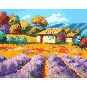 Домик в Провансе Раскраска картина по номерам акриловыми красками на холсте Русская живопись
