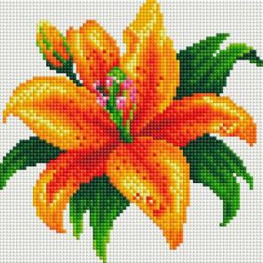 Тигровая лилия Алмазная вышивка мозаика на подрамнике Белоснежка