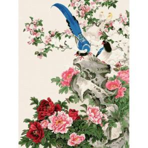 Райские птицы Раскраска картина по номерам акриловыми красками на холсте Белоснежка