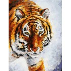 Тигр на снегу Раскраска картина по номерам акриловыми красками на холсте Белоснежка