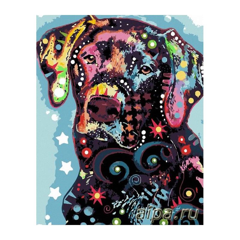 Собака цветная Раскраска картина по номерам акриловыми ...