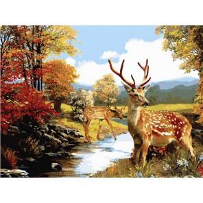 Олени Раскраска картина по номерам акриловыми красками на холсте Белоснежка