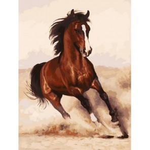 Галоп Раскраска картина по номерам акриловыми красками на холсте Белоснежка