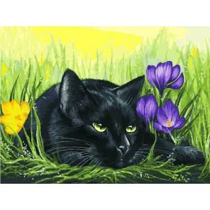 Кот и крокусы Раскраска картина по номерам на холсте Белоснежка