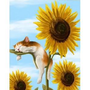 Кот - соня Алмазная частичная вышивка (мозаика) Color Kit