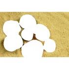 Область выкладки Цветные ракушки Алмазная частичная вышивка (мозаика) Color Kit