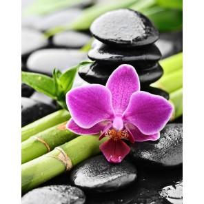 Орхидея и бамбук Алмазная вышивка мозаика Гранни