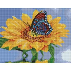 Подсолнух с бабочкой Алмазная вышивка мозаика с рамкой Цветной