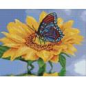 Подсолнух с бабочкой Алмазная вышивка мозаика Цветной