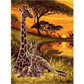 Сафари Раскраска картина по номерам акриловыми красками на холсте Molly