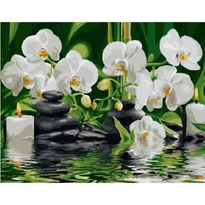 Композиция на воде Раскраска картина по номерам акриловыми красками на холсте Molly