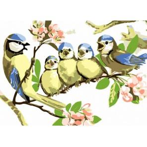 Птенцы на ветке Раскраска картина по номерам акриловыми красками на холсте Menglei