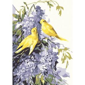 Сирень и птицы Раскраска картина по номерам на холсте Menglei