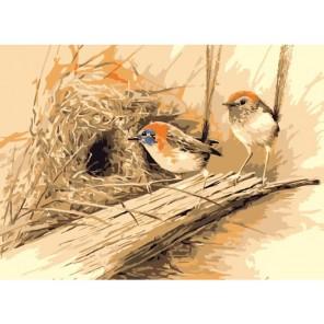Райские птицы (Эрик Шеперд) Раскраска картина по номерам акриловыми красками на холсте Menglei