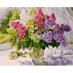 Букет сирени Раскраска картина по номерам акриловыми красками на холсте Iteso