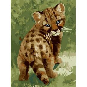 Детеныш леопарда Раскраска картина по номерам на холсте Белоснежка