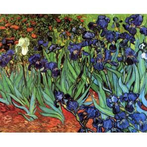 GX6445 Ирисы ( репродукция Ван Гога) Раскраска картина по номерам акриловыми красками на холсте Molly | Купить картину по номера