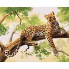 Леопард на ветке Раскраска картина по номерам акриловыми красками на холсте Iteso   Картину по номерам купить