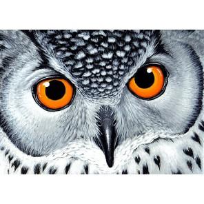 Взгляд совы Алмазная мозаика вышивка Гранни