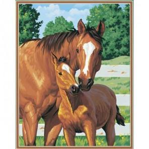 Лошадь и жеребёнок Раскраска (картина) по номерам Dimensions