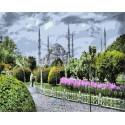 Голубая мечеть Раскраска картина по номерам акриловыми красками на холсте | Картина по номерам купить