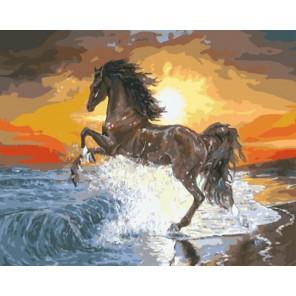 Конь и морской прибой Раскраска картина по номерам акриловыми красками на холсте| Картина по номерам купить