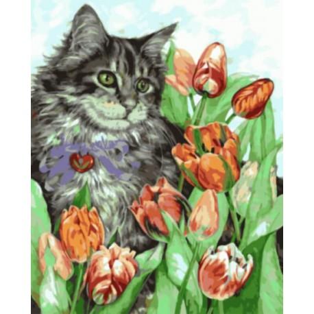 Котик в тюльпанах Раскраска картина по номерам акриловыми красками на холсте | Картина по номерам купить