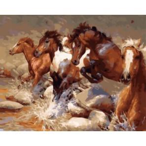 Быстрый бег Раскраска картина по номерам акриловыми красками на холсте   Картина по номерам купить