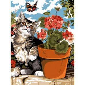 Котенок и бабочка Раскраска картина по номерам на холсте