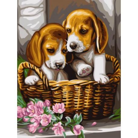 Щенки в корзине Раскраска картина по номерам акриловыми ...