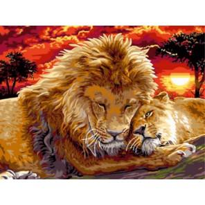 Лев с львицей Раскраска картина по номерам акриловыми красками на холсте