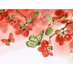 Алые орхидеи Раскраска картина по номерам акриловыми красками на холсте | Картина по цифрам купить